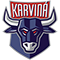 HC Býci Karviná